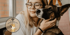 Köpeklerde İshal