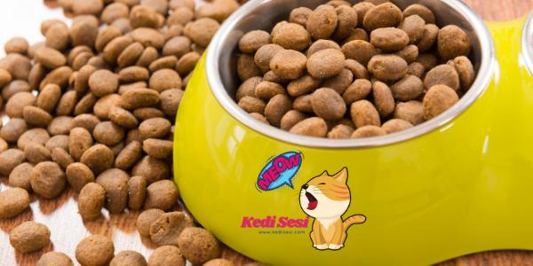 Tahılsız Kedi Mamaları Sağlıklı Mı?