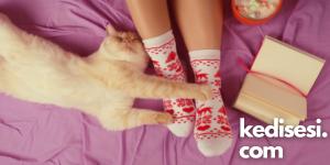 Kedim Neden Ayağımı Kokluyor?